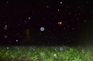 Rain bounced off of concrete outside Kauffman Court Saturday night as storms moved through the area.