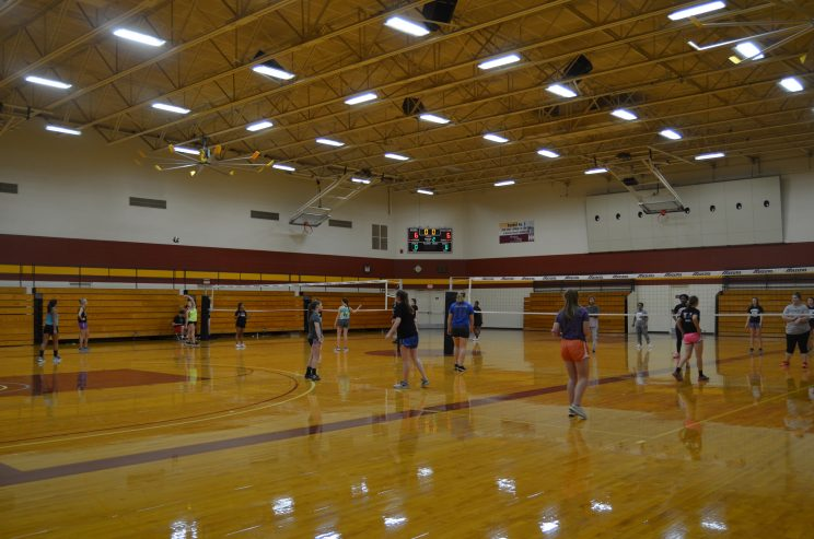 Larks Volleyball